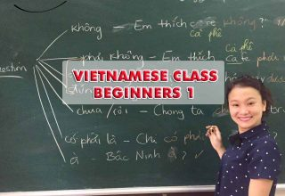 Vietnamese for Beginner